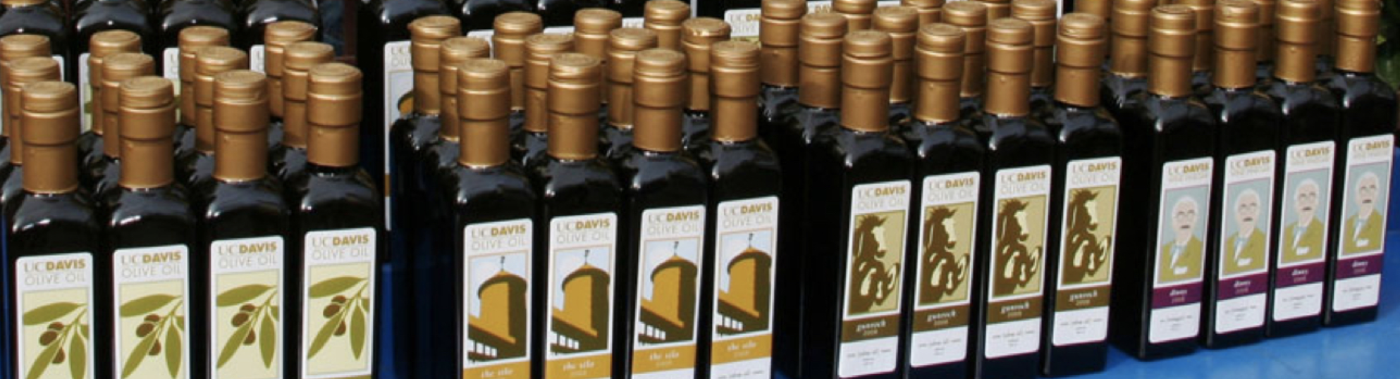 uc davis olive oil product