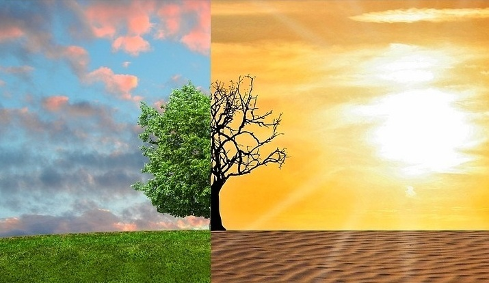 Two side by side picture of a landscape: one is green and the other dried up due to change in climate