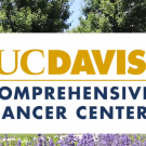 ucd comprehensive cancer center